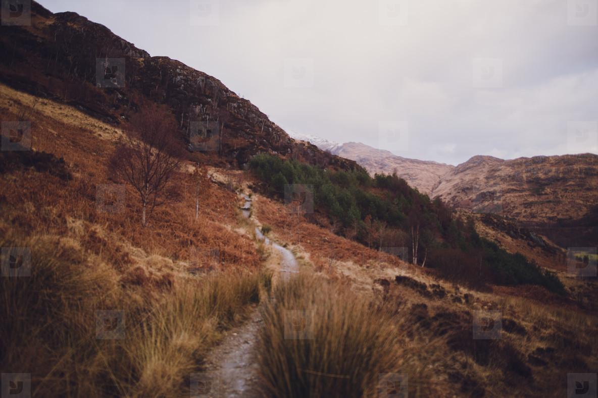 Scotland  18