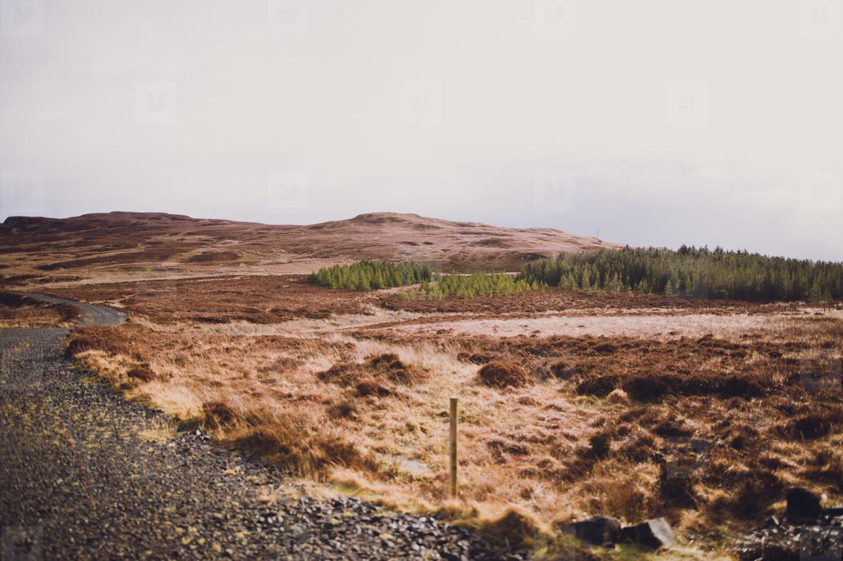 Scotland  23