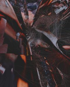 Atria  Ventricles 09