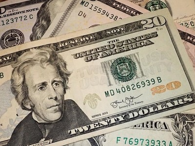 Andrew Jackson on twenty Dollars bill macro  United states money