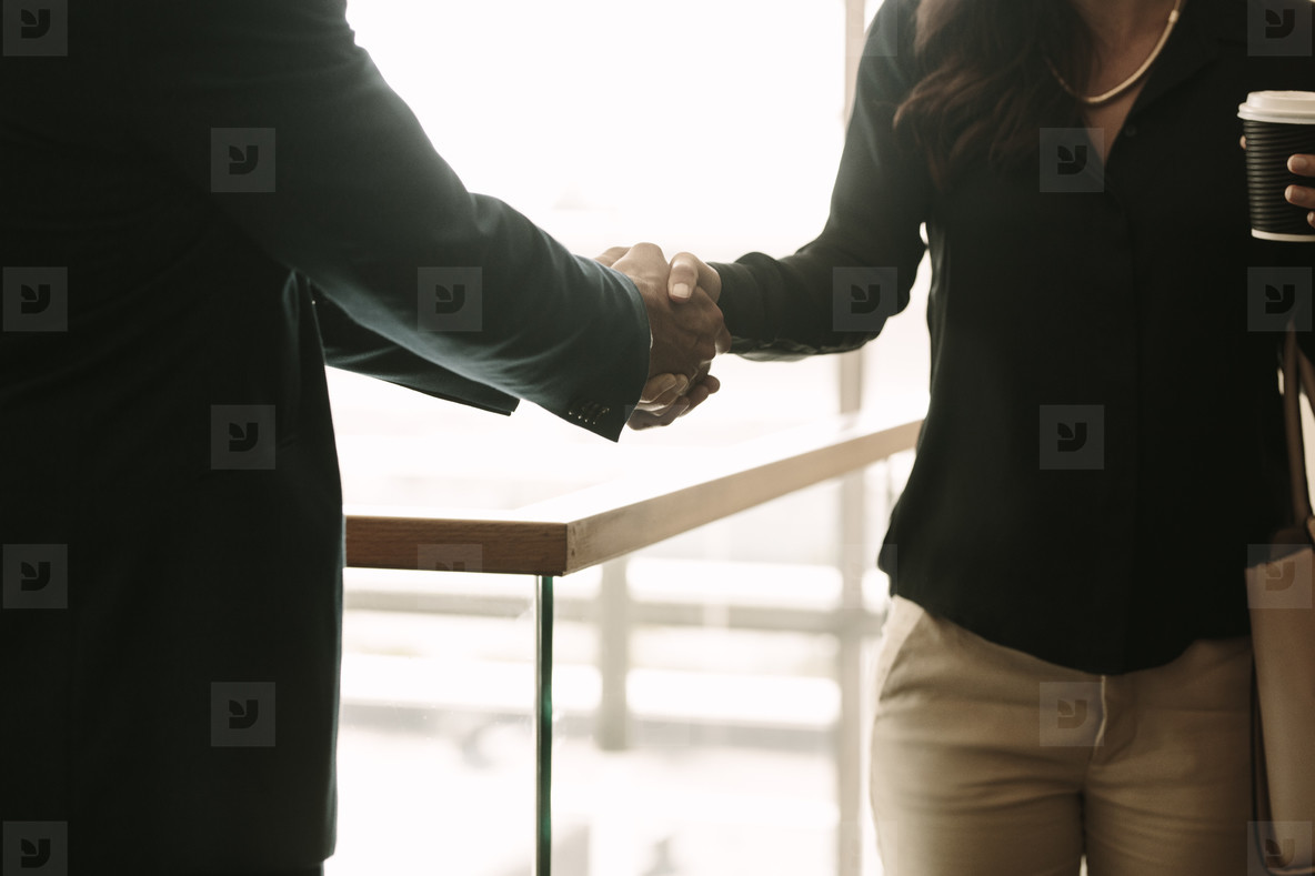 Colleagues greeting each other with hand shake