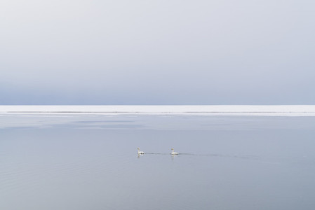 East Iceland 06