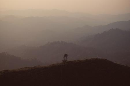 Summer mountain view