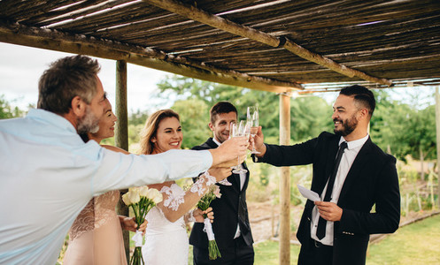 Newlyweds and friends having wedding toast