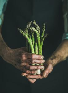 Bunch of fresh seasonal asparagus in dirty mans hands