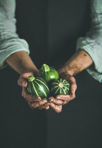 Farmer in black apron holding fresh green zucchinis
