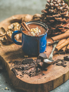 Rich winter hot chocolate with cinnamon and walnuts in mug
