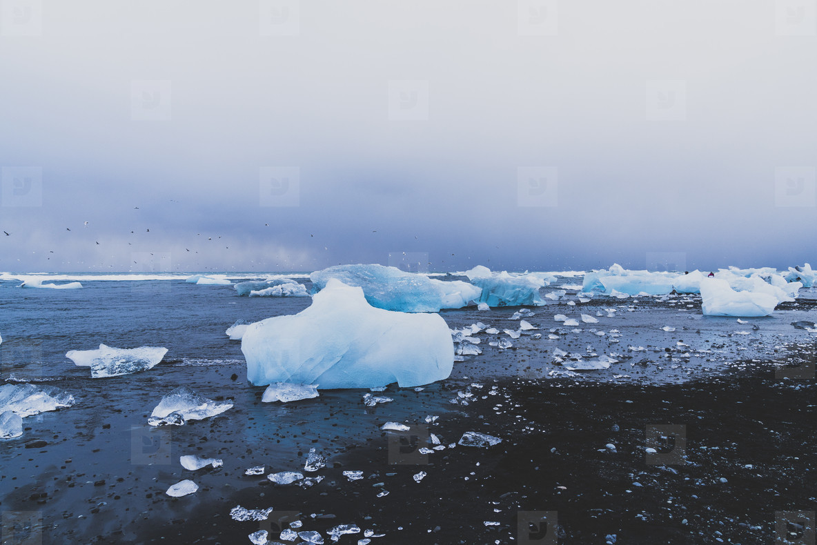 Icebergs  Iceland  01