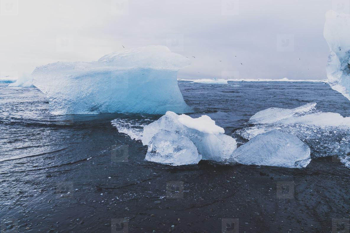 Icebergs  Iceland  02
