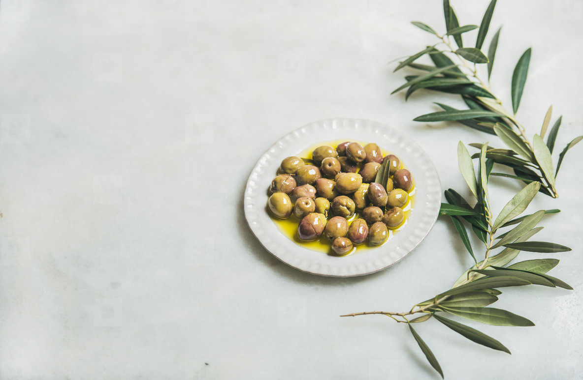 Pickled green Mediterranean olives in virgin oil and olive tree branch