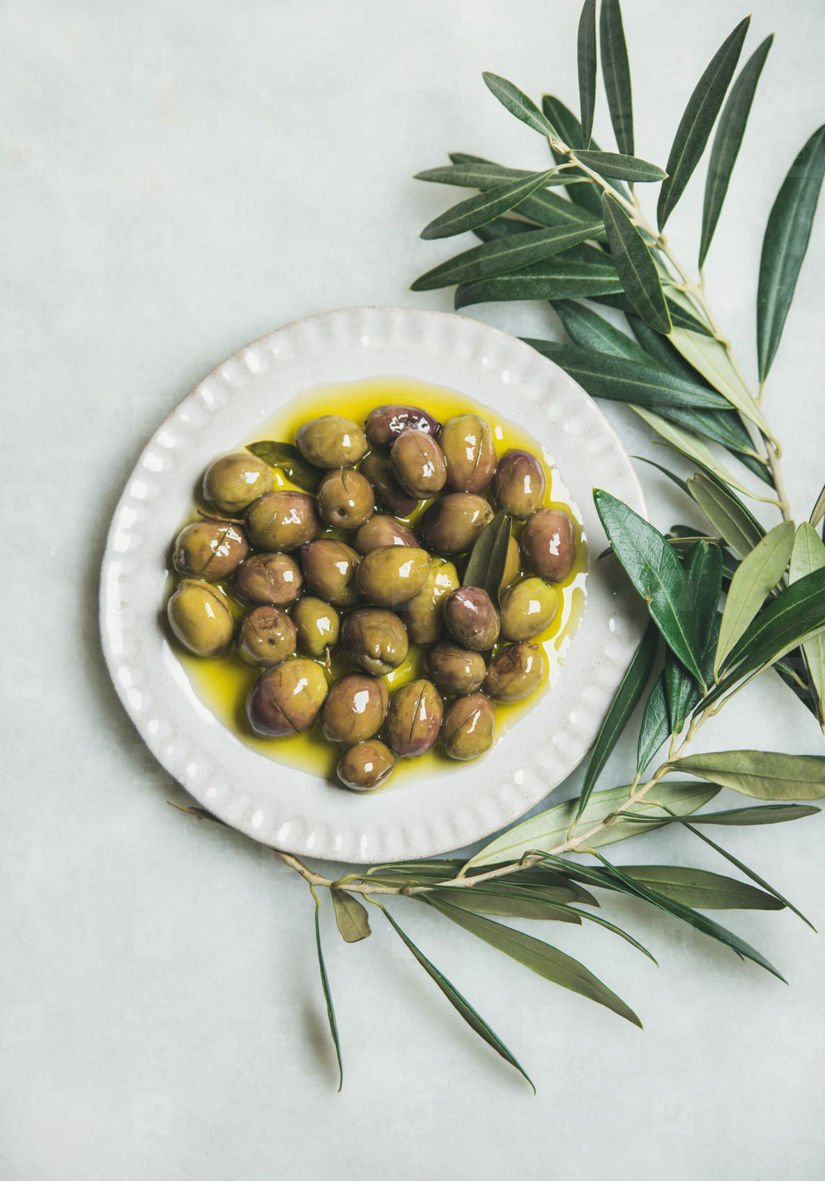 Pickled green olives and olive tree branch over marble background