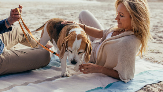 Mature couple relaxing on beach with a puppy