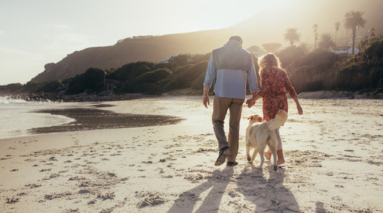 Senior couple with pet dog at the beach