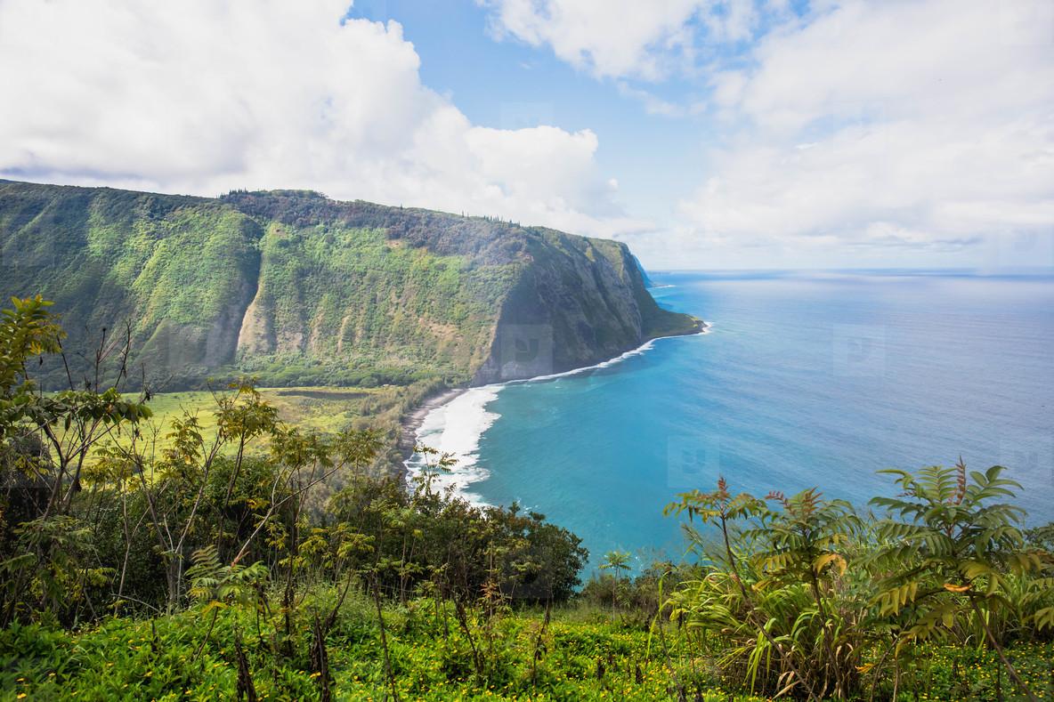 Wapio Valley  Island of Hawaii