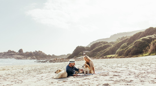Senior couple relaxing on beach with pet dogs