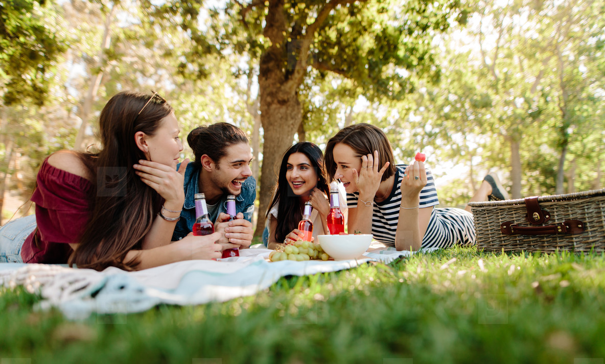Friends enjoying a picnic at park
