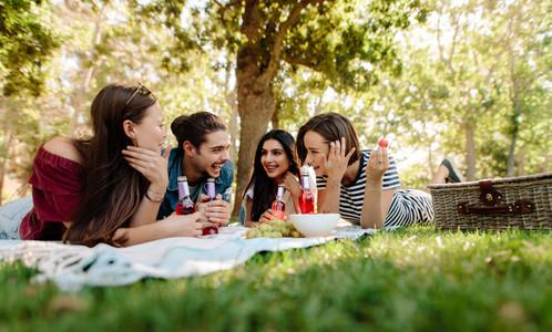 Friends enjoying a picnic at park