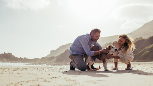 Mature couple with pet dog on the beach