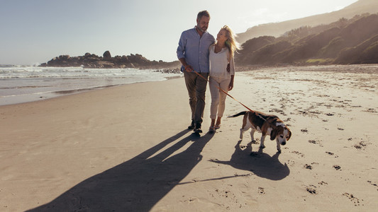 Couple walking a dog on the beach