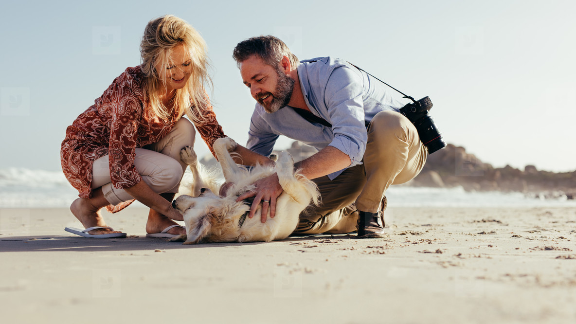 Senior couple playing with dog on beach