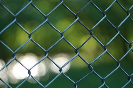 Morning mesh L