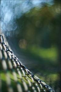 Fence Wave