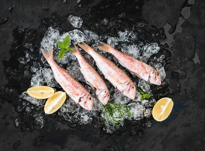 Raw Red Mullet fish with lemon mint and rosemary on chipped ice