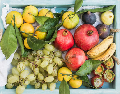 Various colorful tropical fruit selection