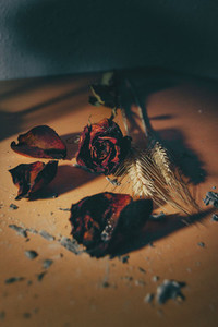 dried red rose flower in a wooden background