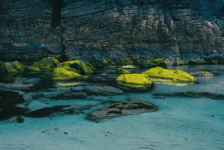 Beach with moss stones