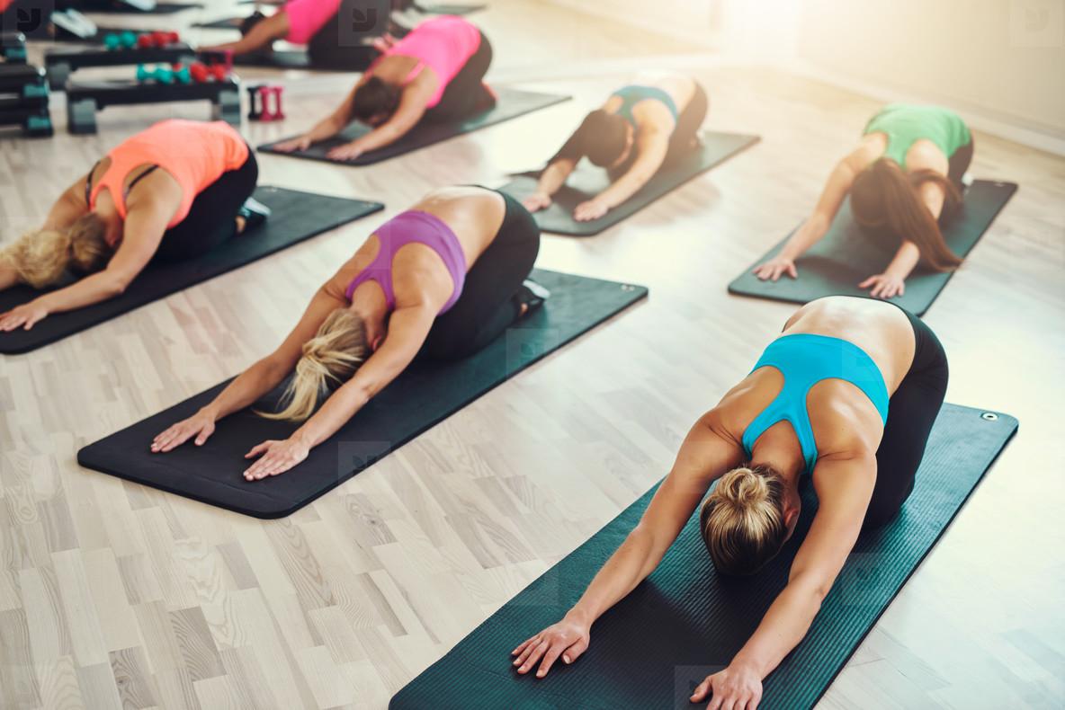 Smiling group of women doing exercise in gym