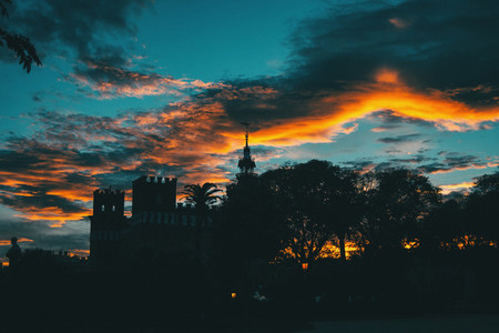 Silhouette of ciutadella garden over colorful sunset sky