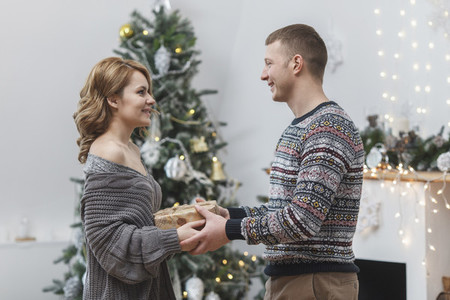 A Golden Christmas 30