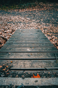 Autumnal path of wooden boards