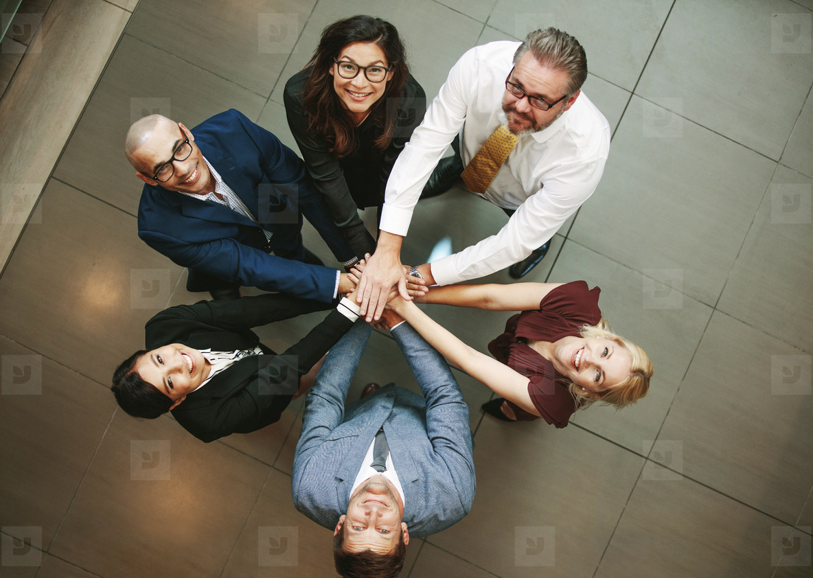 Diverse business team showing unity