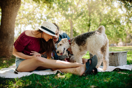 Couple playing with dog on picnic