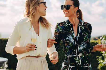 Fashionable female friends with wine outdoors