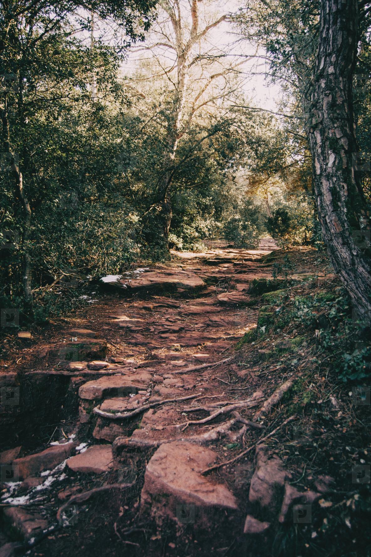 Earth trail crossing
