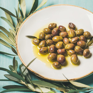 Pickled olives in oil and olive tree branch over blue background