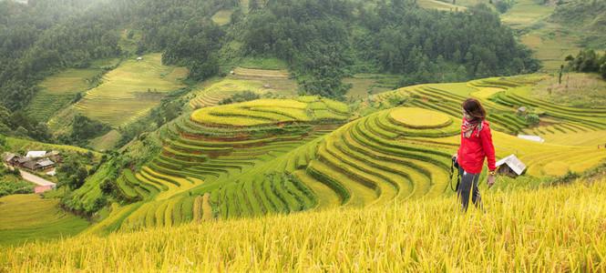 YenBai  Vietnam