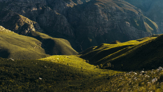 Shadows and light in Jonkershoek nature reserve