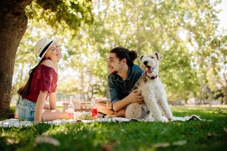 Couple having fun on picnic