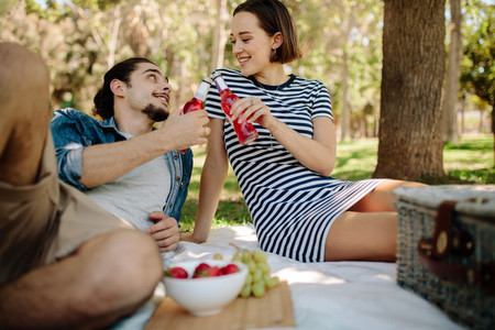 Couple having picnic at park