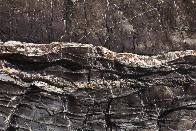 Brown stone with white streaks