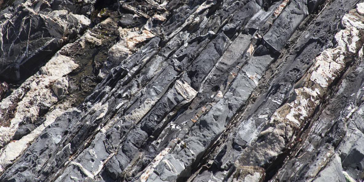 Gray stone with white streaks