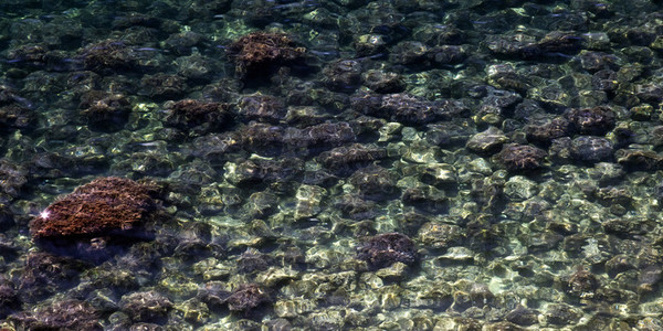 Water and stones pattern