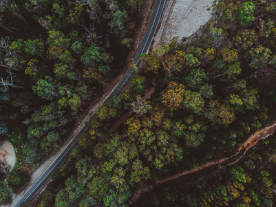 A Drive Around Tasmania 41