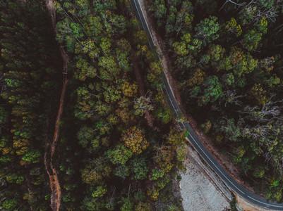 A Drive Around Tasmania 42
