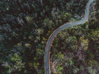 A Drive Around Tasmania 44