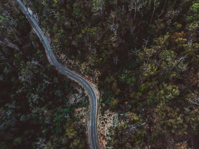 A Drive Around Tasmania 48